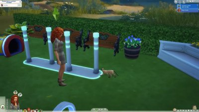 The Sims 4 Cats & Dogs